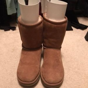 Size 8 classic short authentic uggs- chestnut